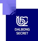 dalbong_secret